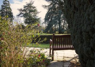St Joseph's Nursing Home Garden